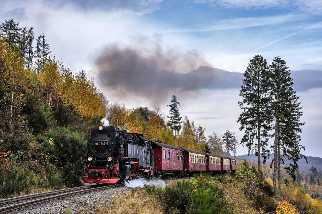 Harz - Harzgebergte   Stoomtrein naar de Brocken