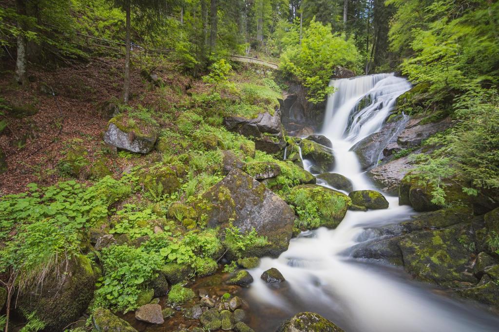 Zwarte Woud - Triberg waterval