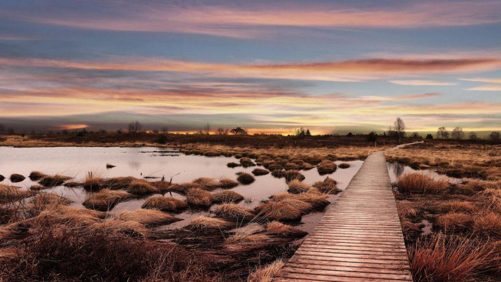 Natuurpark Hoge Venen - Noordrijn Westfalen